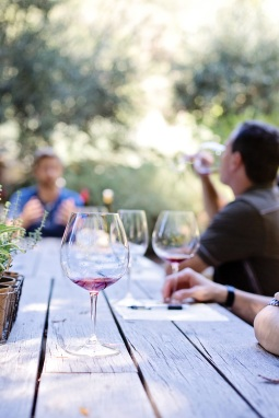 Wine tastings and wine tour Paris Day Trip